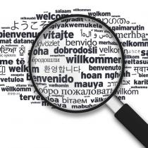 Traduction de documents standards